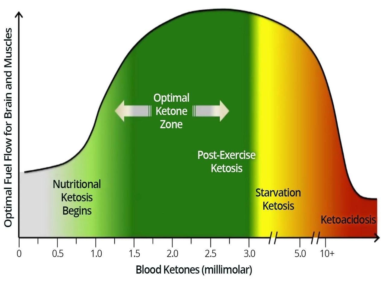 Ketosis & Diabetic Ketoacidosis
