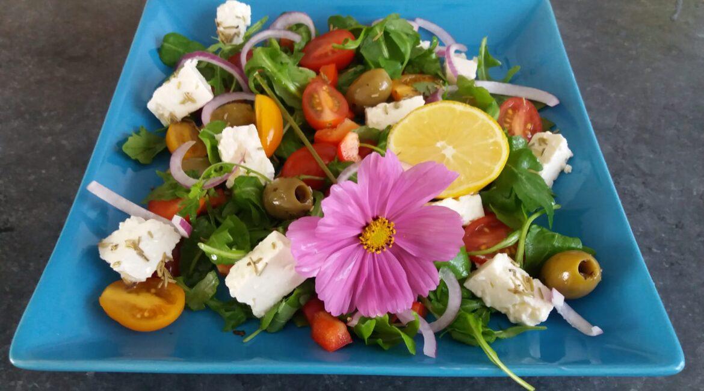 Low Carb LCHF Diet Plan Salads Keto Diet Plan Salads