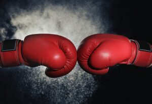 boxing 300x205 - LCHF versus Vegan Freak Show